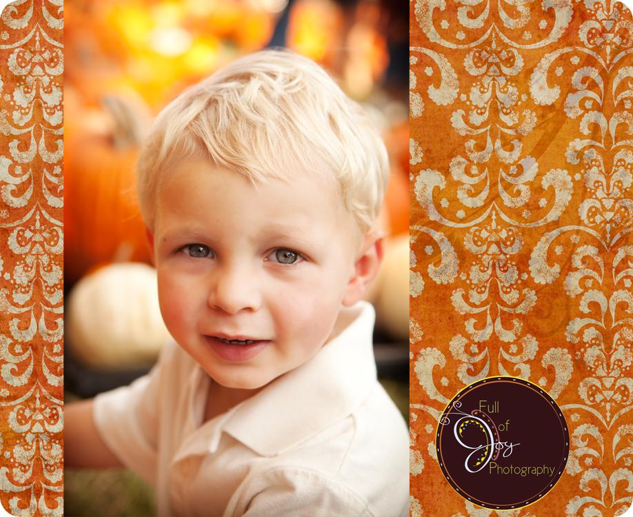 Pumpkin Patch - Valley Morning Star : Premium